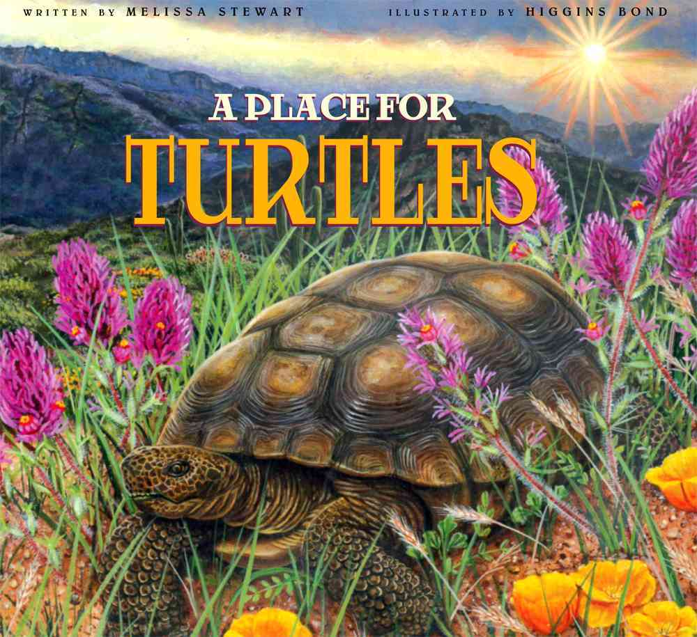 A Place for Turtles By Stewart, Melissa/ Bond, Higgins (ILT)